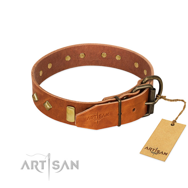 Daily use natural leather dog collar with stylish design embellishments