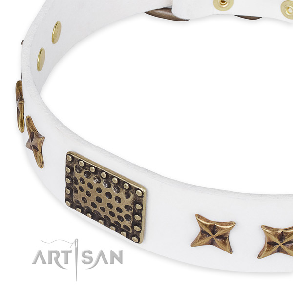 Full grain leather collar with corrosion proof buckle for your lovely dog