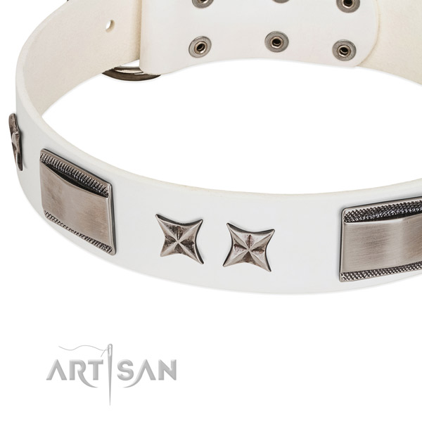 Reliable full grain natural leather dog collar with strong hardware