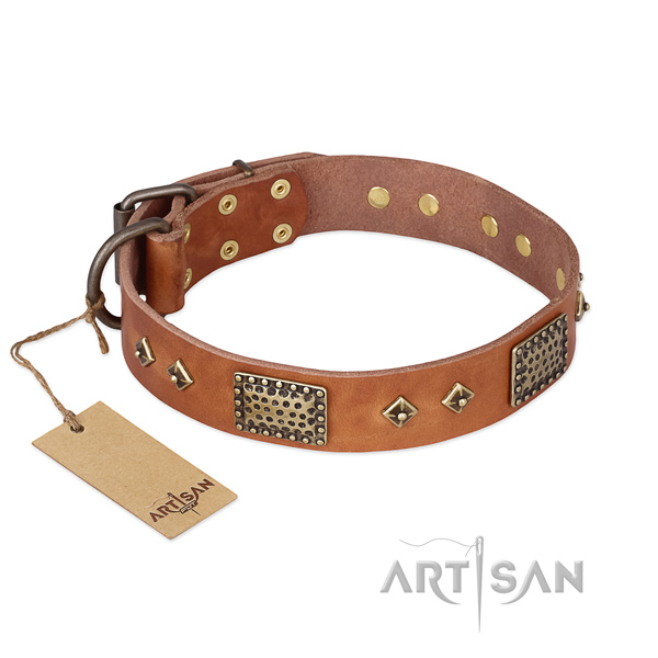 Stunning genuine leather dog collar for comfy wearing