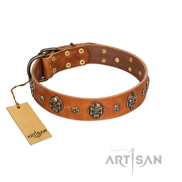 Embellished full grain genuine leather collar for your dog
