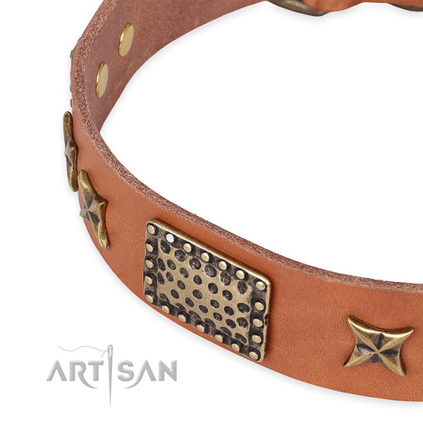 Full grain leather collar with strong buckle for your impressive doggie