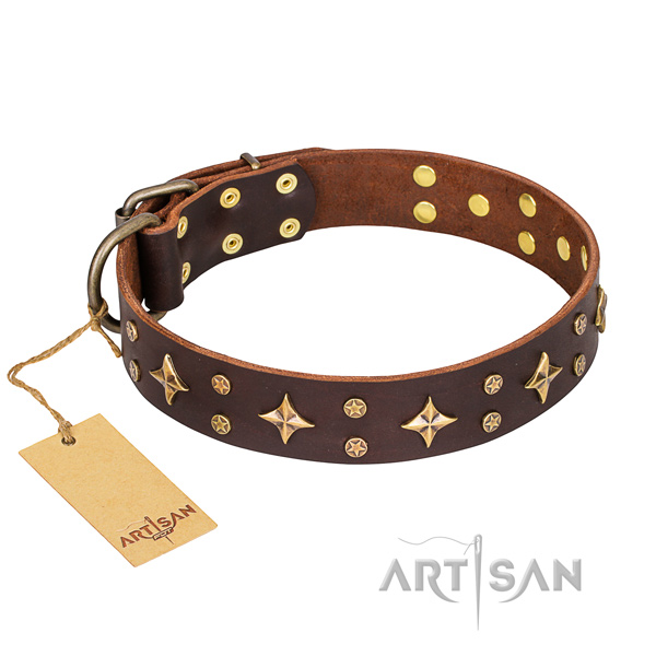 Stylish walking dog collar of fine quality leather with adornments