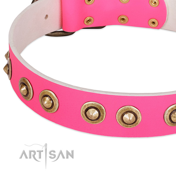 Durable adornments on leather dog collar for your dog