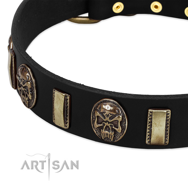 Reliable hardware on leather dog collar for your canine