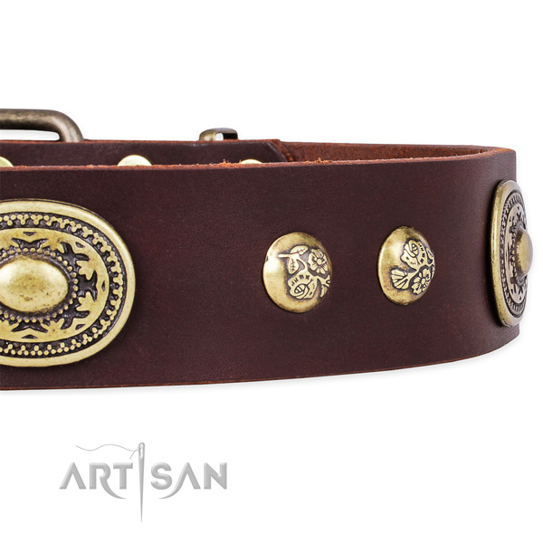 Adjustable full grain genuine leather collar for your stylish canine