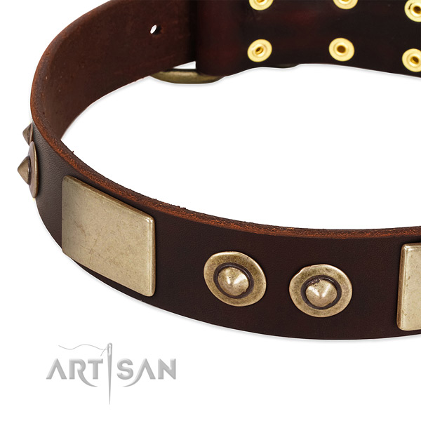 Reliable D-ring on genuine leather dog collar for your canine