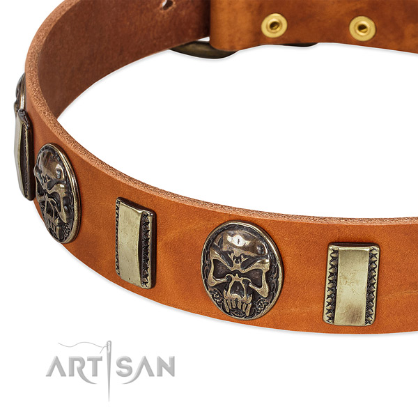 Corrosion resistant studs on genuine leather dog collar for your canine