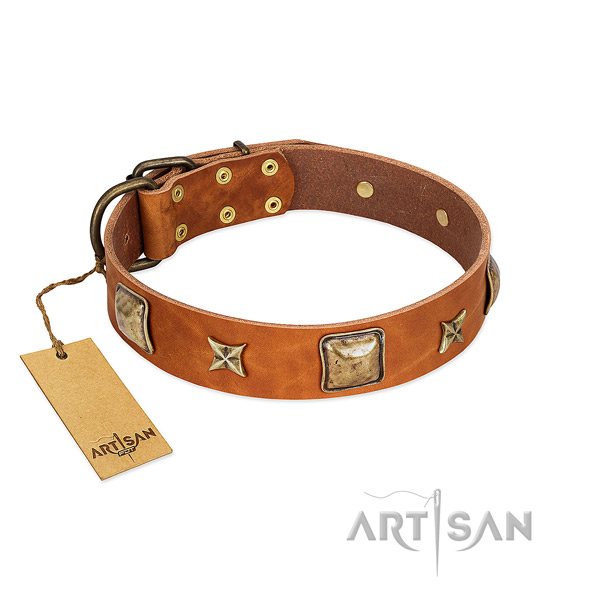 Exceptional leather collar for your doggie