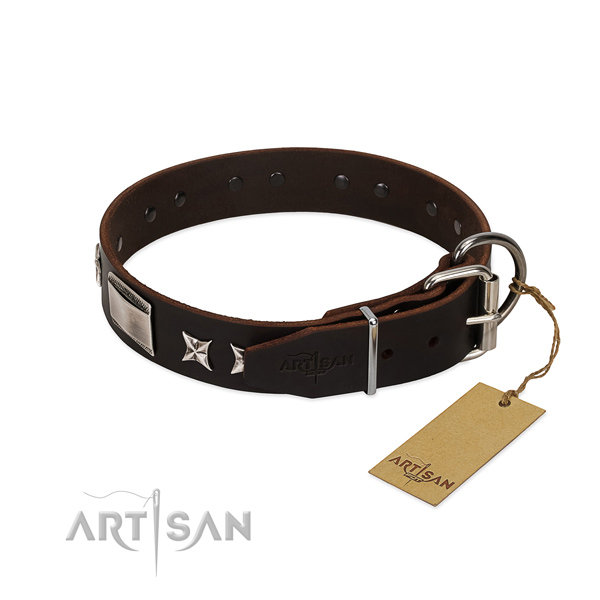 Incredible collar of natural leather for your stylish four-legged friend