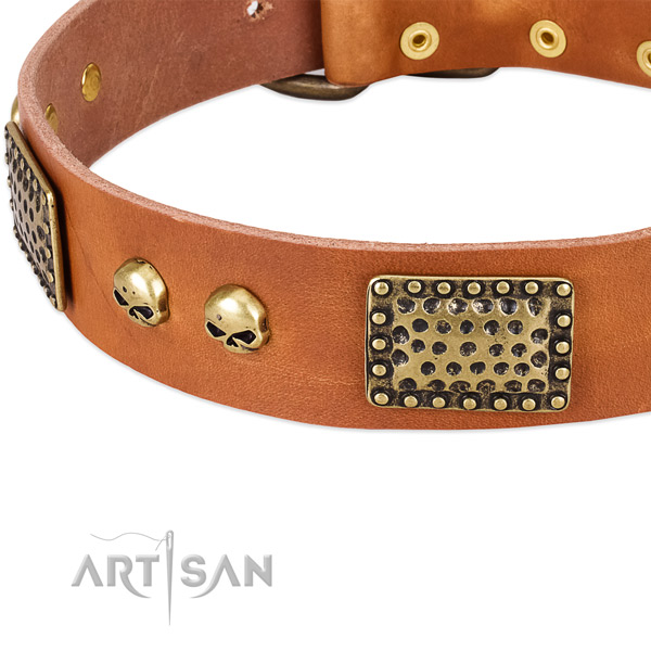 Reliable adornments on leather dog collar for your dog