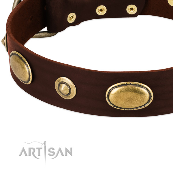Reliable fittings on natural leather dog collar for your doggie