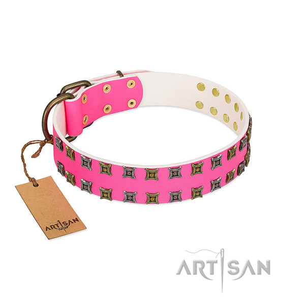 Natural leather collar with extraordinary embellishments for your dog