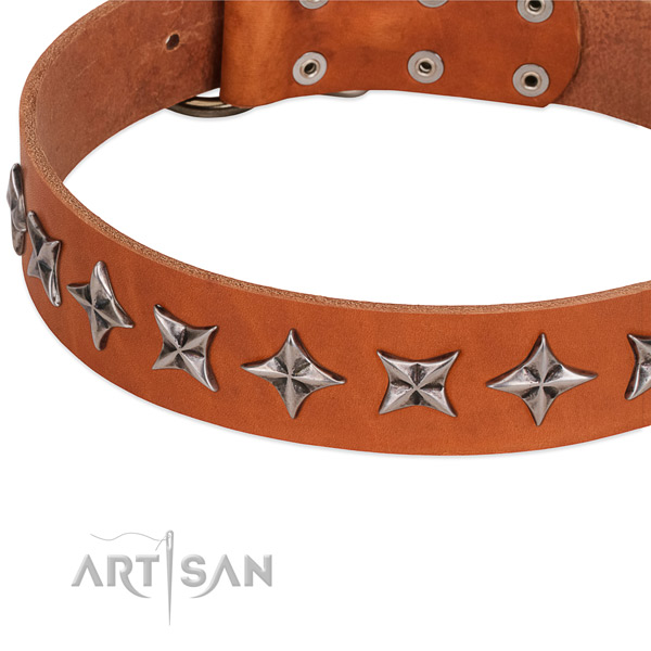 Handy use embellished dog collar of best quality leather