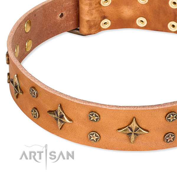Basic training decorated dog collar of fine quality full grain natural leather