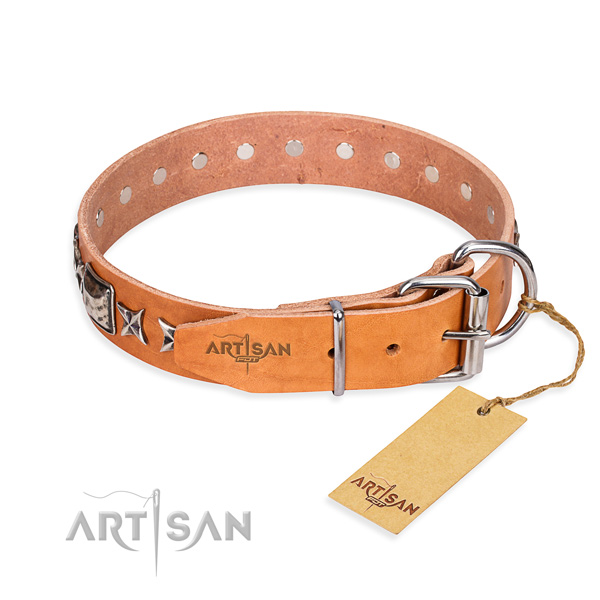 Fine quality adorned dog collar of leather