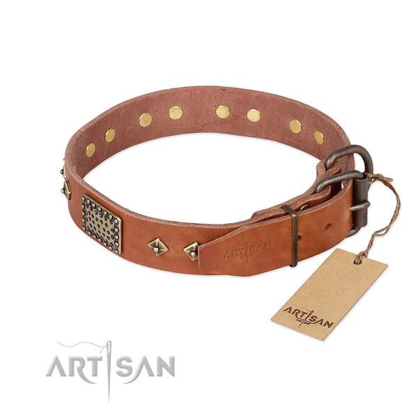 Full grain leather dog collar with durable D-ring and studs