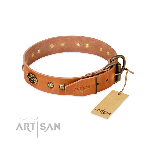 Corrosion resistant embellishments on full grain genuine leather dog collar for your doggie
