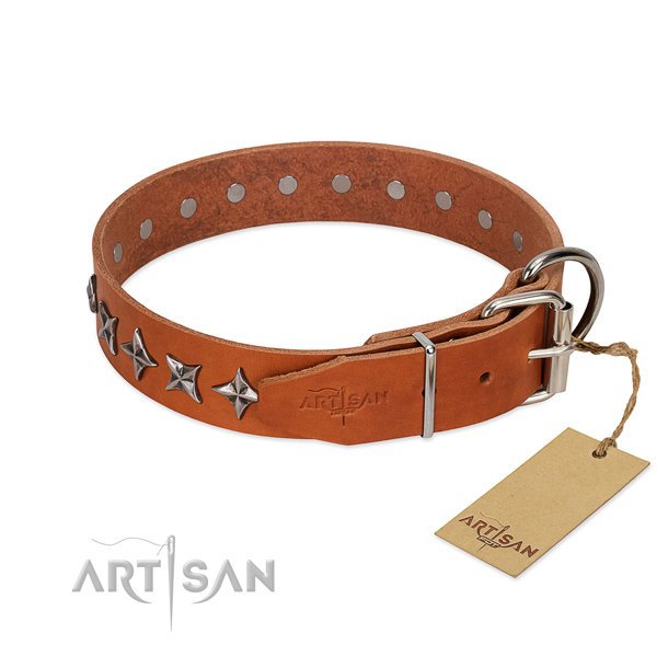 Everyday walking decorated dog collar of reliable genuine leather