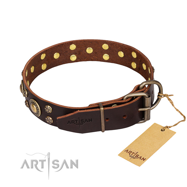 Everyday walking adorned dog collar of strong full grain leather