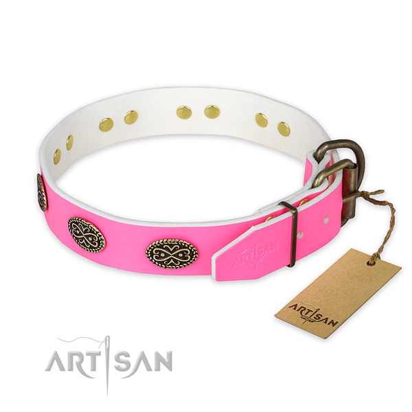 Reliable traditional buckle on handy use dog collar