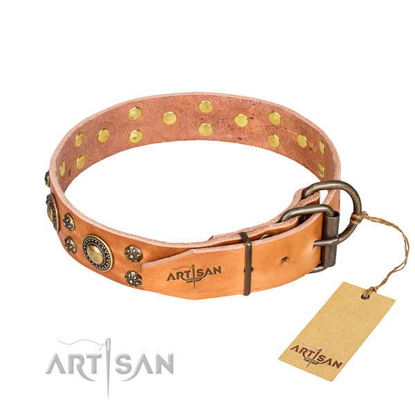 Stylish walking adorned dog collar of high quality full grain leather