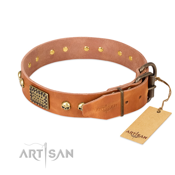 Corrosion resistant embellishments on walking dog collar