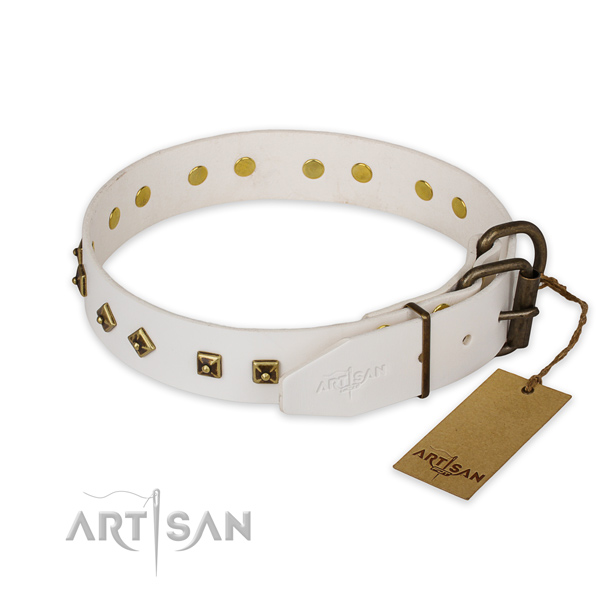 Durable buckle on full grain genuine leather collar for daily walking your pet