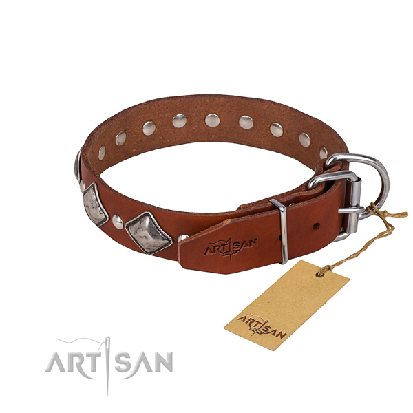 Daily use studded dog collar of quality natural leather