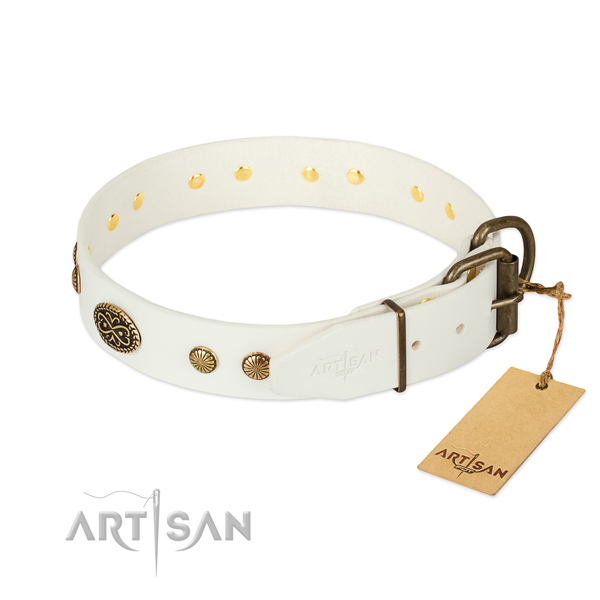 Rust-proof buckle on full grain leather dog collar for your pet