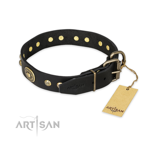 Rust resistant traditional buckle on full grain natural leather collar for daily walking your four-legged friend