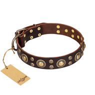 """Flower Melody"" FDT Artisan Brown Leather dog Collar with Mixed Studs"