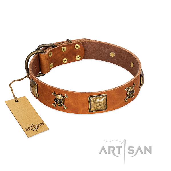 Top notch leather dog collar with rust resistant embellishments