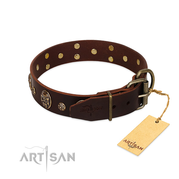 Durable D-ring on leather dog collar for your canine