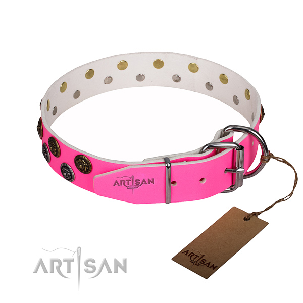 Comfortable wearing studded dog collar of top quality natural leather