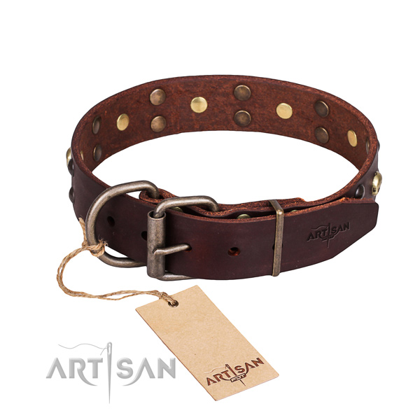 Everyday use studded dog collar of finest quality genuine leather