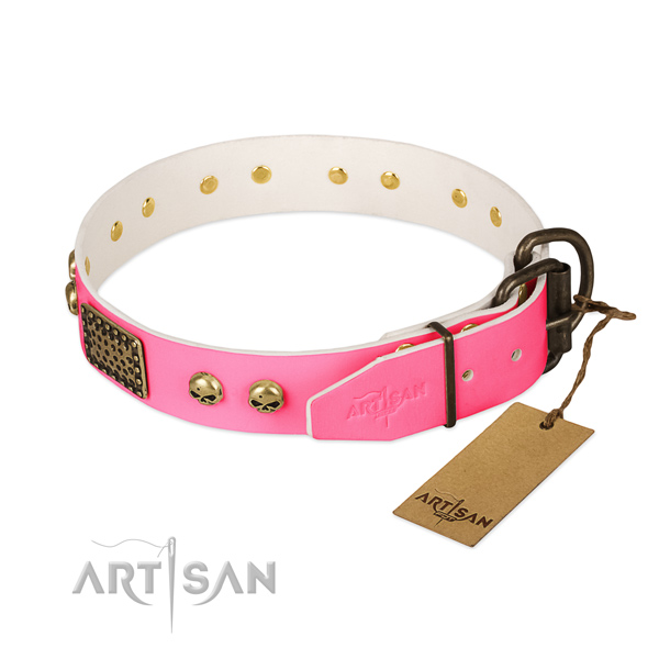 Corrosion resistant D-ring on daily walking dog collar