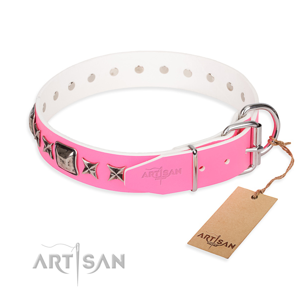 Quality decorated dog collar of full grain leather