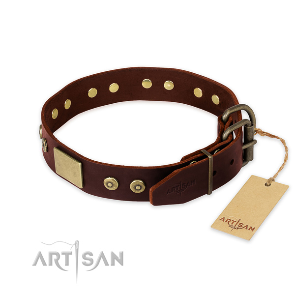 Rust resistant studs on daily walking dog collar