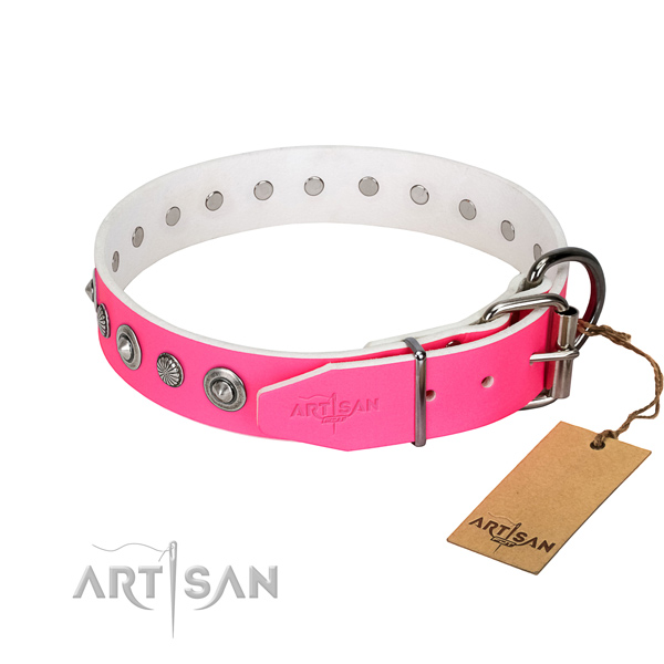 Top quality leather dog collar with trendy studs