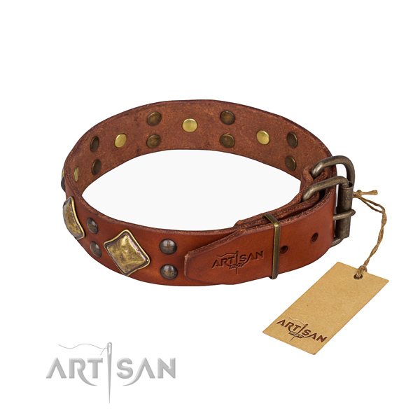 Full grain leather dog collar with amazing corrosion resistant embellishments