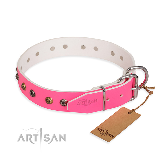 Full grain genuine leather dog collar with exceptional reliable studs