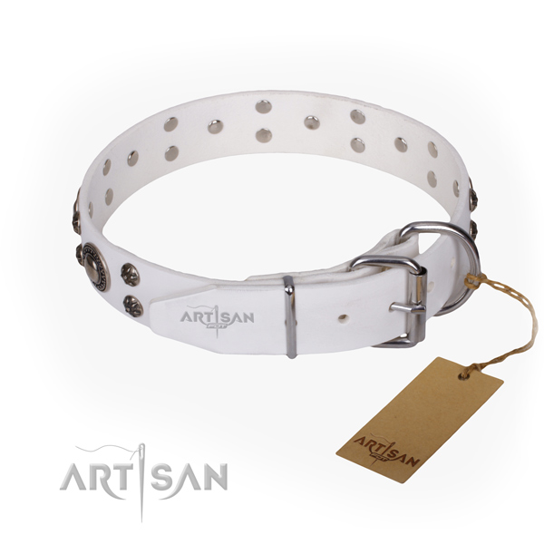 Everyday use decorated dog collar of quality full grain leather