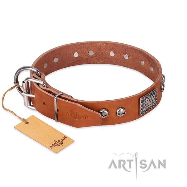 Corrosion resistant buckle on everyday walking dog collar