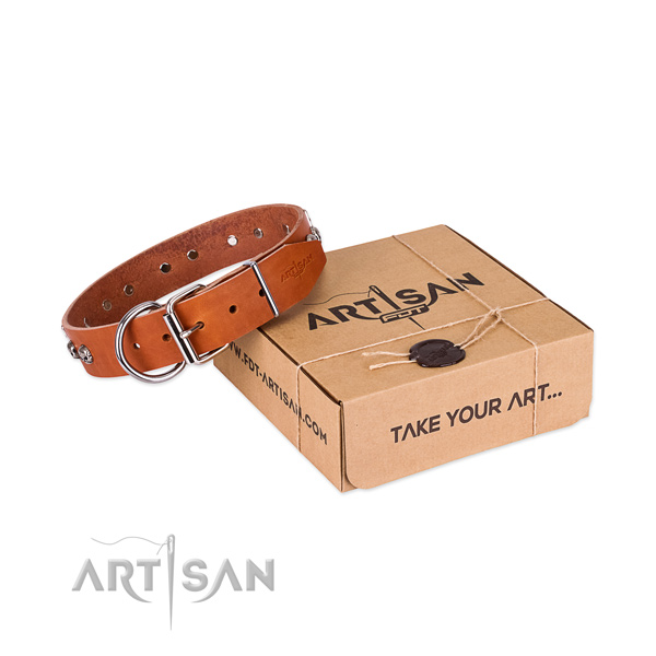 Rust resistant traditional buckle on dog collar for comfortable wearing