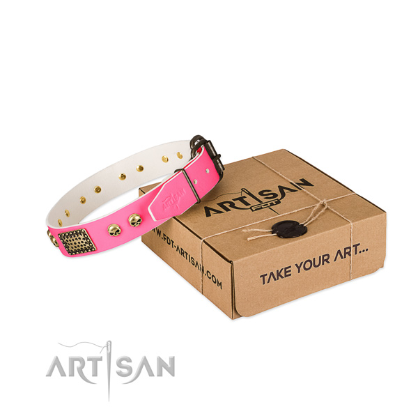 Durable decorations on dog collar for stylish walking