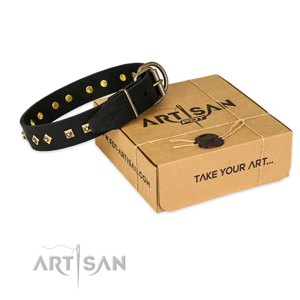 Corrosion proof traditional buckle on genuine leather collar for your stylish pet