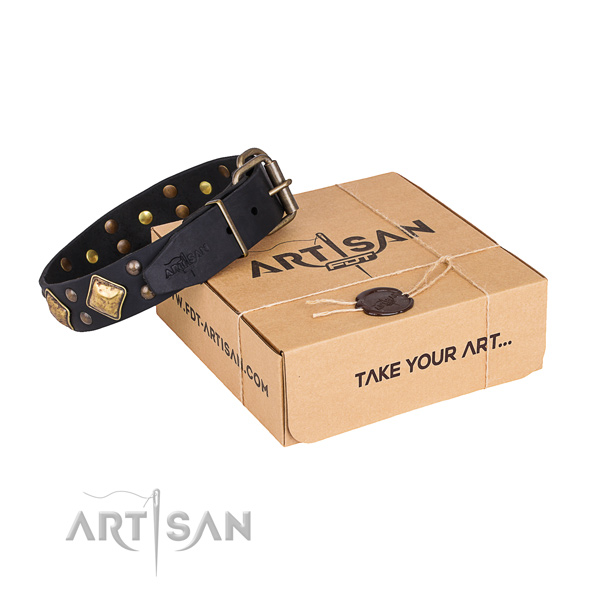 Fancy walking dog collar with Extraordinary rust-proof decorations