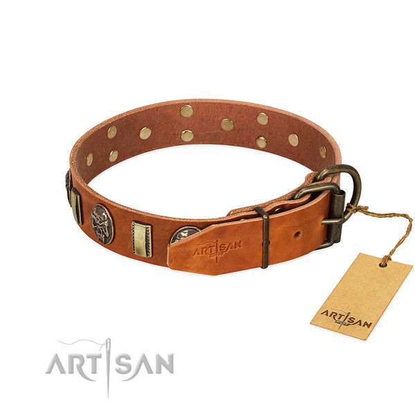 Rust resistant hardware on full grain natural leather collar for fancy walking your dog