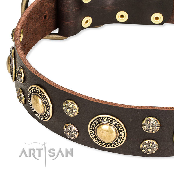 Handy use decorated dog collar of high quality full grain genuine leather